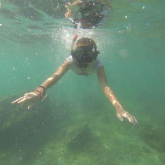 un petit plongeon...